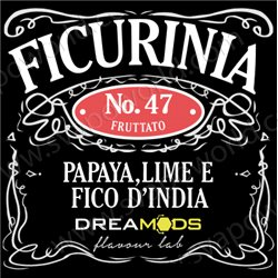 No.17 FICURINIA aroma 10 ml - Dreamods
